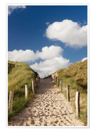 Premium poster  Sylt, path through dunes - Markus Lange