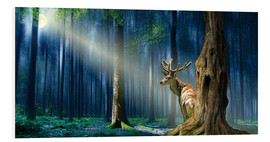 Foam board print  The Deer In The Mystical Forest - Monika Jüngling