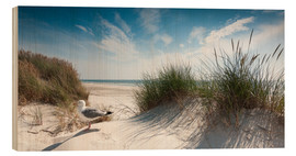 Wood print  Dune with fine beach grass and seagull, Sylt - Reiner Würz