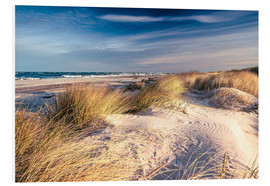 Forex  Sand Dunes at the Beach - Sascha Kilmer