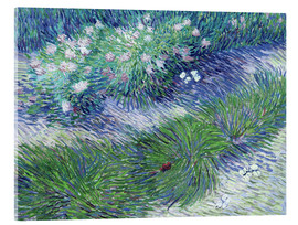 Acrylic print  Butterflies and Flowers - Vincent van Gogh