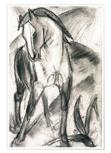 Premium poster Young horse in mountain landscape