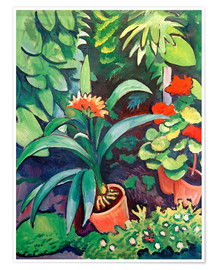Premium poster  Flowers in the Garden, Clivia and Pelargoniums - August Macke