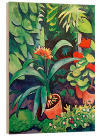 Wood print  Flowers in the Garden, Clivia and Pelargoniums - August Macke