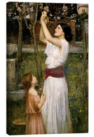 Canvas print  Gathering Almond Blossoms - John William Waterhouse
