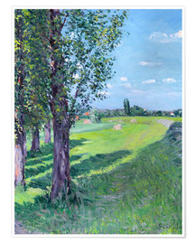 Premium poster  Petit Gennevilliers from the 'Aumone Graben' - Gustave Caillebotte