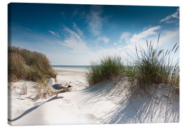 Canvas  Sylt - Dune with fine beach grass and seagull - Reiner Würz RWFotoArt