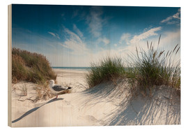 Wood print  Sylt - dune with fine beach grass and seagull - Reiner Würz