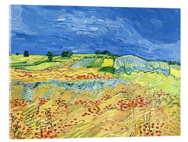 Acrylic print  Fields with Blooming Poppies - Vincent van Gogh