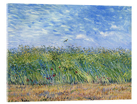 Acrylic print  Corn field with poppies and partridge - Vincent van Gogh