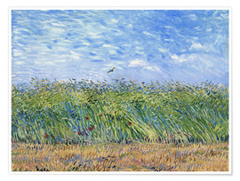Premium poster Corn field with poppies and partridge