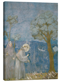 Canvas  St.Francis preache sto the birds - Giotto di Bondone
