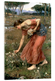 Acrylic print  Narcissus - John William Waterhouse
