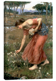 Canvas print  Narcissus - John William Waterhouse