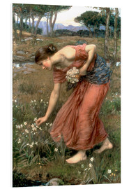 Foam board print  Narcissus - John William Waterhouse