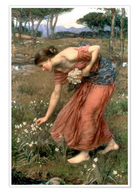 Premium poster  Narcissus - John William Waterhouse