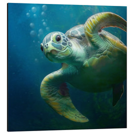 Aluminium print  Bubbles, the cute sea turtle - Photoplace Creative