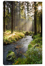 Canvas print  Bode river in Harz, Germany - Dave Derbis