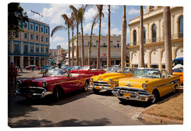 Canvas print  Oldtimers in Havanna, Cuba - Peter Schickert