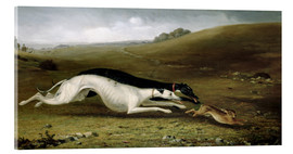 Acrylic print  Hare Coursing in a Landscape, 1870 - John Fitz Marshall