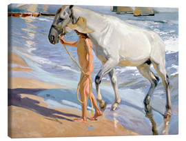 Canvas  Washing the Horse - Joaquin Sorolla y Bastida