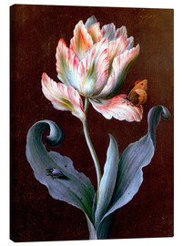 Canvas  Parrot Tulip with Butterfly and Beetle - Barbara Regina Dietzsch