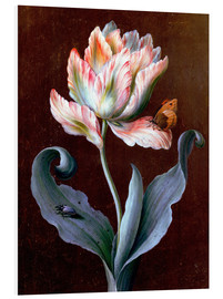 Foam board print  Parrot tulip with butterfly and beetle - Barbara Regina Dietzsch