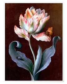 Premium poster  Parrot tulip with butterfly and beetle - Barbara Regina Dietzsch