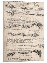 Wood print  Bones of the arms - Leonardo da Vinci