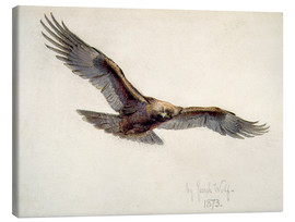 Canvas print  Eagle in flight, 1873 - Joseph Wolf