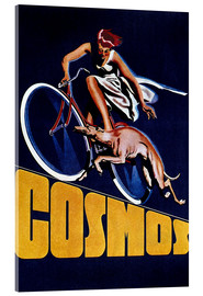 Acrylic print  Cosmos bicycles - Advertising Collection