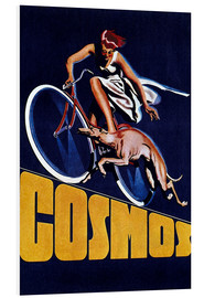 Forex  Cosmos bicycles