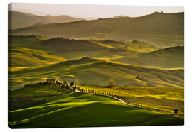 Canvas  Evening light in Tuscany - Andreas Wonisch