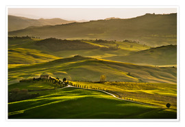 Premium poster  Evening light in Tuscany - Andreas Wonisch