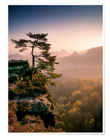 Premium poster  Lonely Tree at Sunrise - Andreas Wonisch