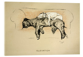 Acrylic print  Elevation - Cecil Charles Windsor Aldin