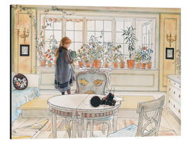 Aluminium print  Flowers on the windowsill - Carl Larsson