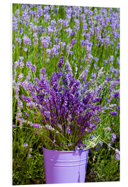 Foam board print  Lavender in metal bucket - Thomas Klee