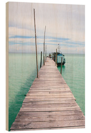 Wood  Wooden jetty on tropical exotic island - Alejandro Moreno de Carlos