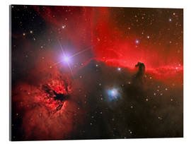 Acrylic glass  Horsehead Nebula, constellation Orion - Reinhold Wittich