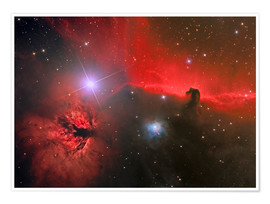 Premium poster Horsehead Nebula, constellation Orion