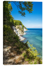 Canvas print  Chalk cliff on the island Ruegen in Germany - Rico Ködder