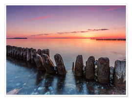Premium poster  Breakwater on the beach of the sea in the sunset - Frank Herrmann