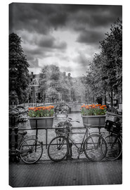 Canvas  Typical Amsterdam II - Melanie Viola