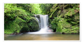 Premium poster  Black Forest Waterfall - Markus Lange