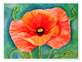 Premium poster Big poppy flower