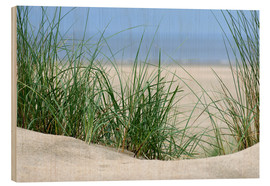 Wood print  Dune with sea view - Susanne Herppich
