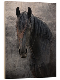 Wood  Horse with no name - Joachim G. Pinkawa