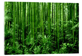Acrylic glass  bamboo forest - GUGIGEI