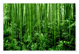 Premium poster  bamboo forest - GUGIGEI